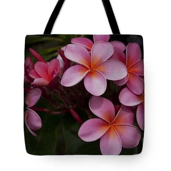 Na Lei Pua Melia O Wailua - Pink Tropical Plumeria Hawaii Tote Bag