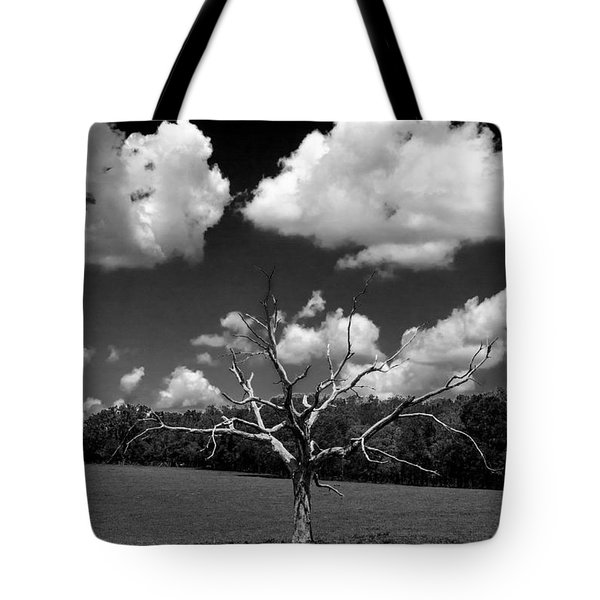 Naked 2 Tote Bag