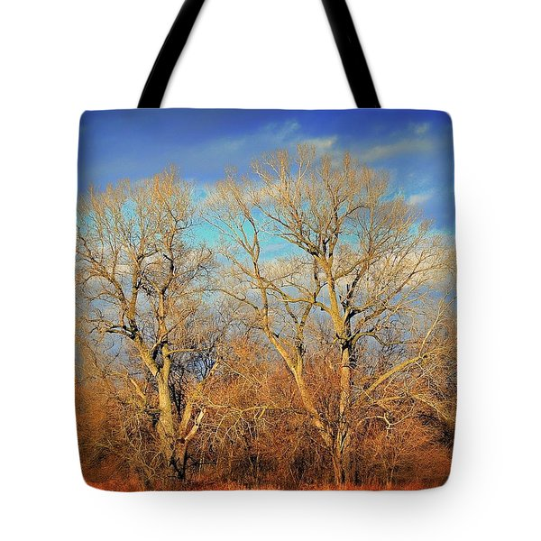 Naked Branches Tote Bag by Marty Koch