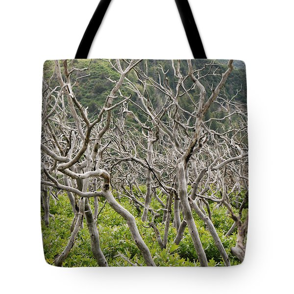 Tote Bag featuring the photograph Naked Ladies Dancing by Mary Carol Story
