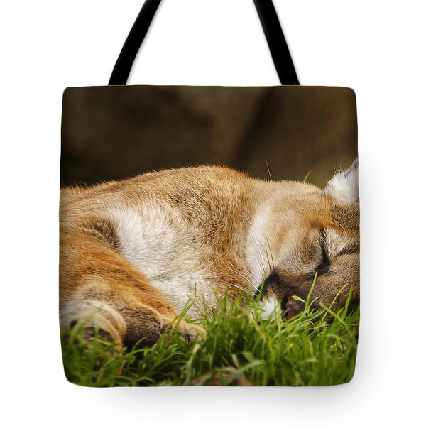 Tote Bag featuring the photograph Nap Time  by Brian Cross