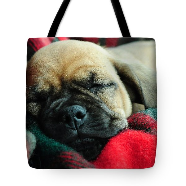 Nap Time Tote Bag by Lisa Phillips