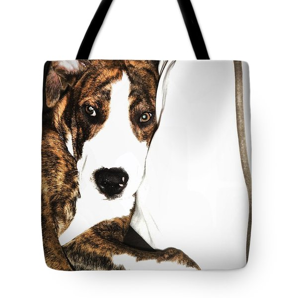 Tote Bag featuring the photograph Nap Time by Robert McCubbin