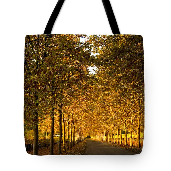 Napa Valley Fall Tote Bag by Bill Gallagher