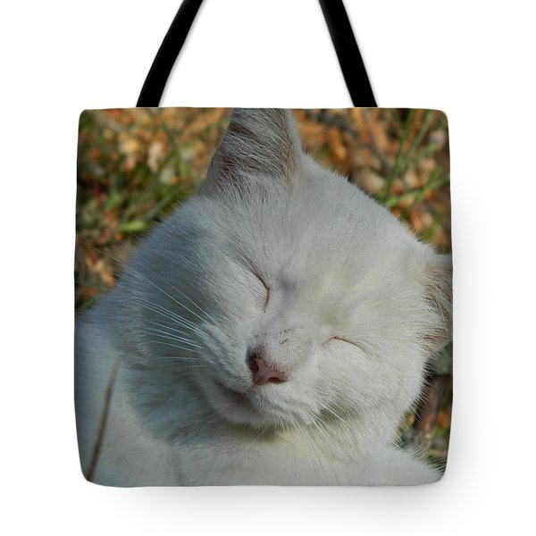 Tote Bag featuring the photograph Napping Barn Cat by Kathy Barney