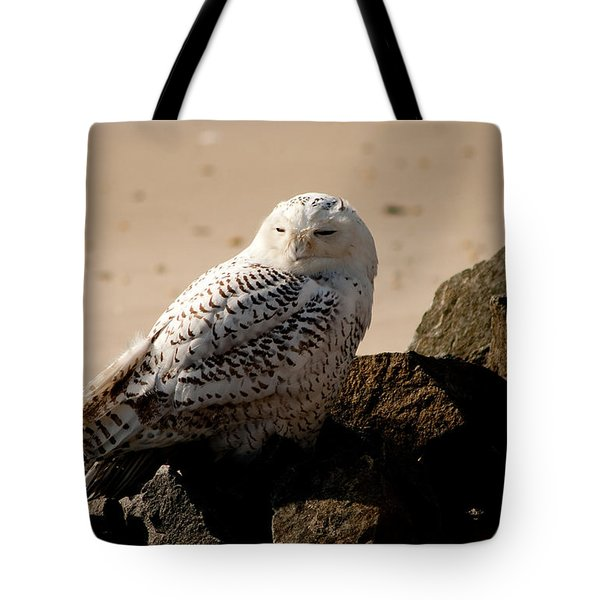 Napping On The Rocks Tote Bag