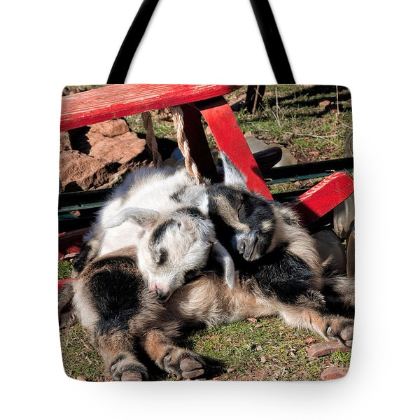 Napping With A Friend 2 Tote Bag