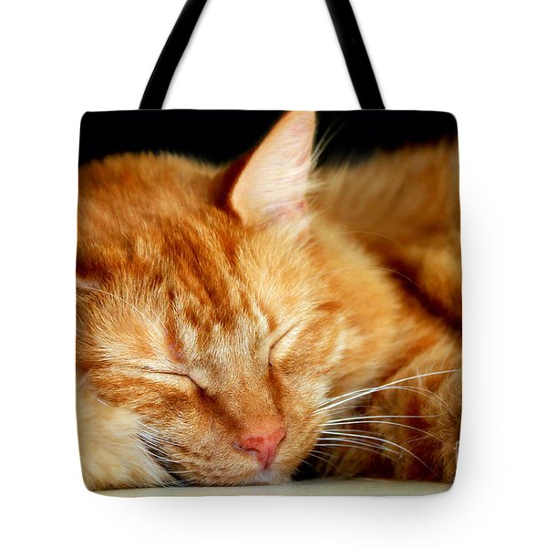 Tote Bag featuring the photograph Naptime by Todd Blanchard