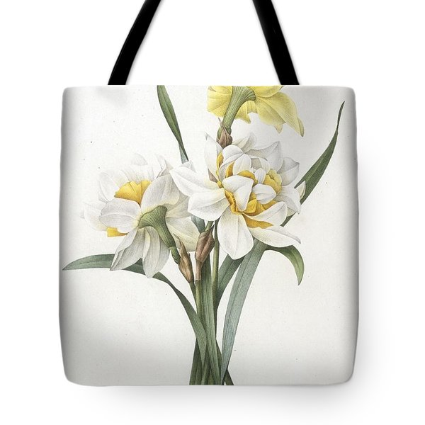 Narcissus Gouani Double Daffodil Tote Bag