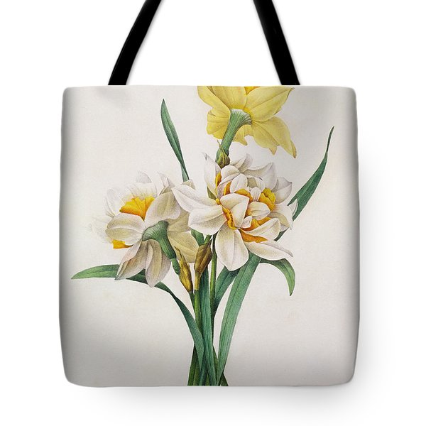 Narcissus Gouani Tote Bag by Pierre Joseph Redoute