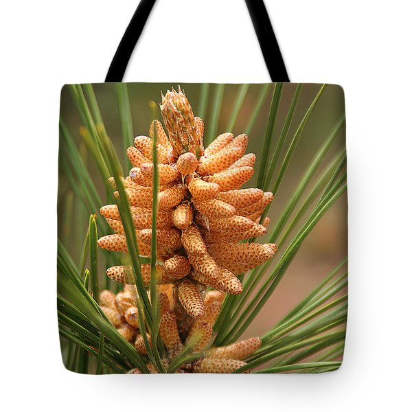 Nascent Pinecone Tote Bag