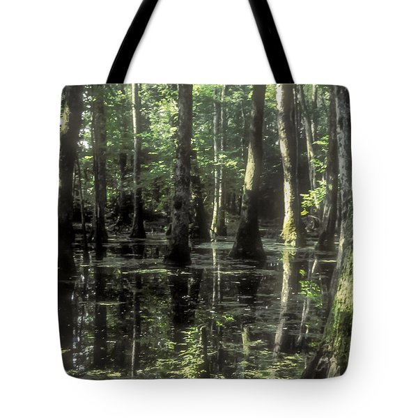 Natchez Trace Cypress Tote Bag by Bob Phillips