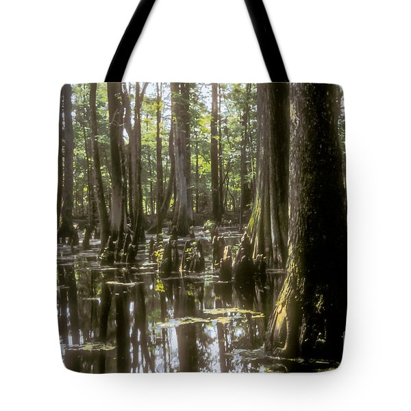 Natchez Trace Wetlands Tote Bag by Bob Phillips