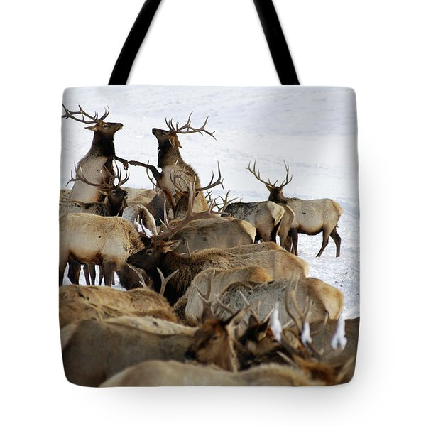 National Elk Refuge, Jackson, Wy Tote Bag