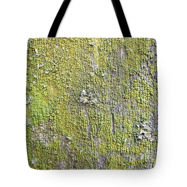 Natural Abstract 1 Tote Bag