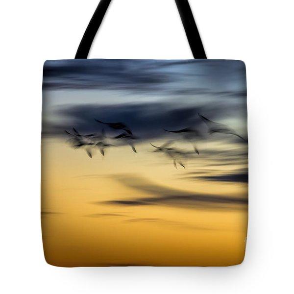 Natural Abstract Art Tote Bag