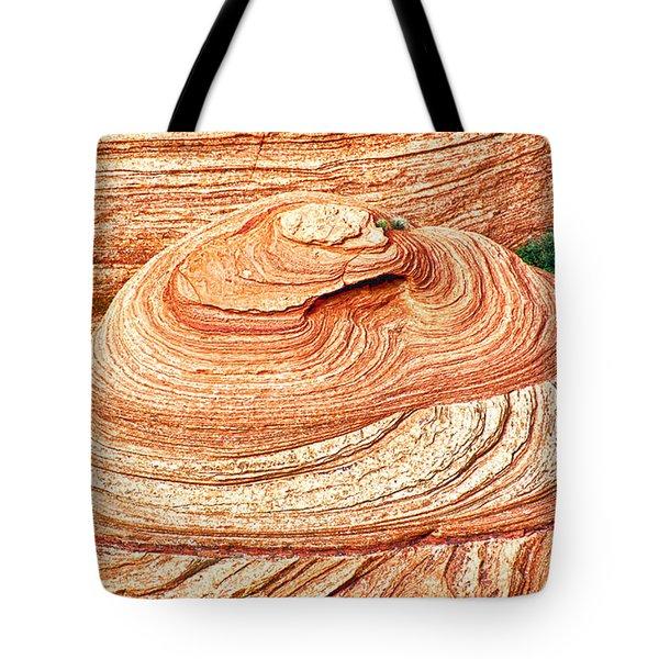 Natural Abstract Canyon De Chelly Tote Bag by Bob and Nadine Johnston