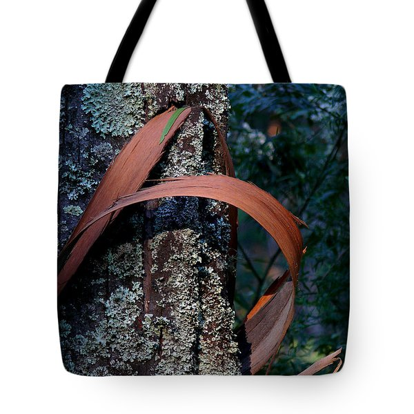 Tote Bag featuring the photograph Natural Bands 1 by Evelyn Tambour