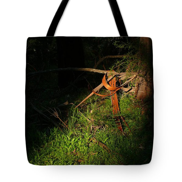 Tote Bag featuring the photograph Natural Bands 2 by Evelyn Tambour