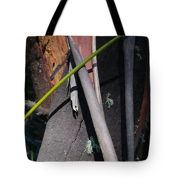 Tote Bag featuring the photograph Natural Bands 3 by Evelyn Tambour