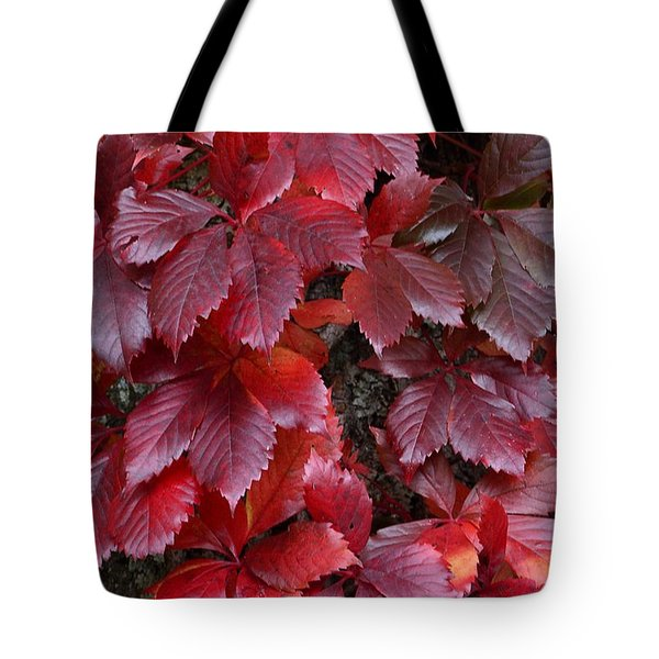 Natural Beauty Tote Bag by Randy Bodkins
