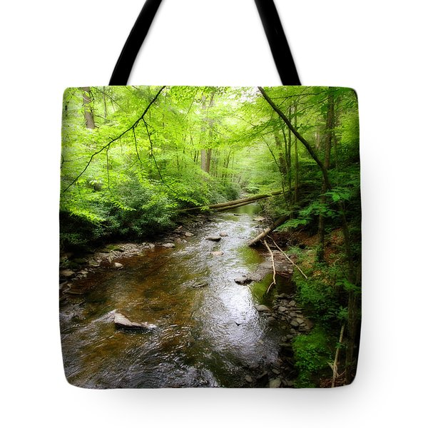 Tote Bag featuring the photograph Natural Beauty by Trina  Ansel