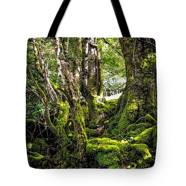 Natural Emeralds. I Wicklow. Ireland Tote Bag by Jenny Rainbow