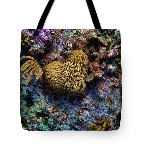 Natural Heart Tote Bag by Peggy Hughes