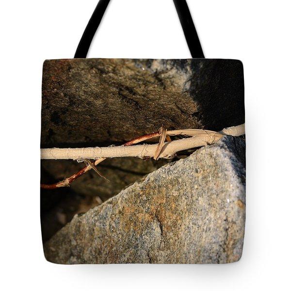Natural Maths Tote Bag by Rebecca Sherman