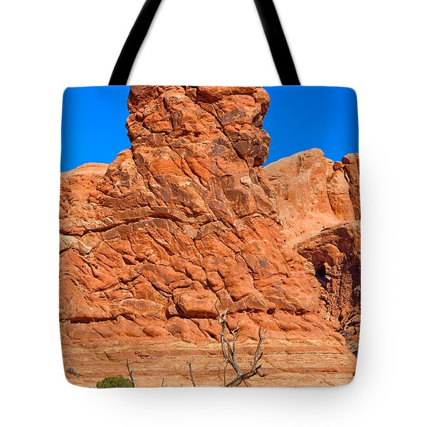 Tote Bag featuring the photograph Natural Sculpture by John M Bailey