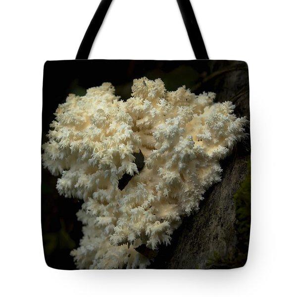 Natural Sculpture Tote Bag