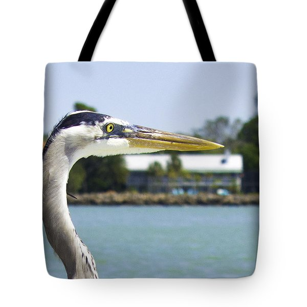 Coexistence Tote Bag by Susan Molnar