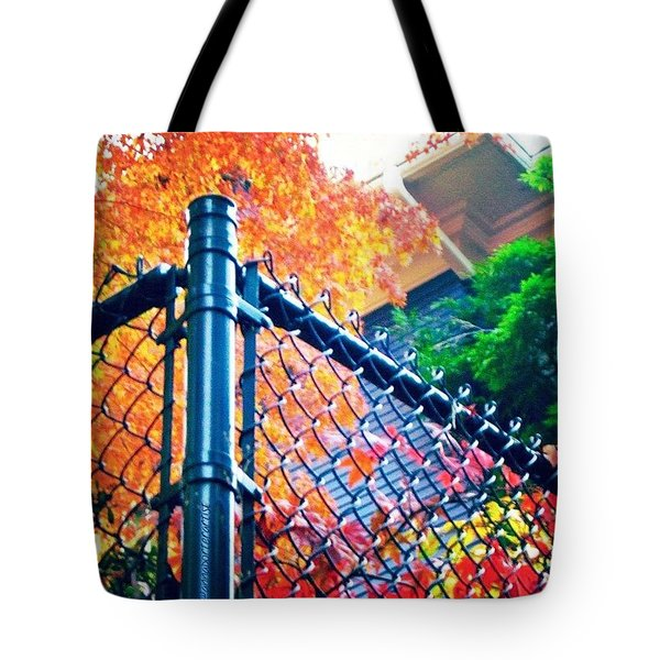 Nature Contained #seasons #autumn Tote Bag