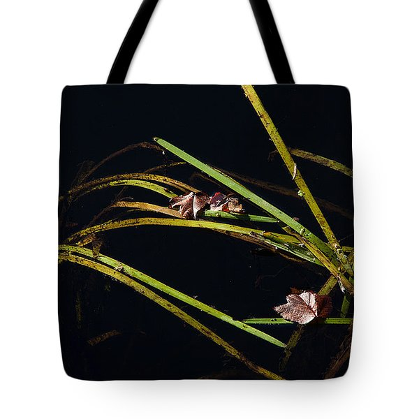 Nature Floats Tote Bag by Karol Livote
