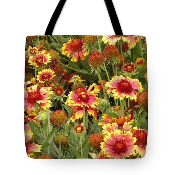 nature - flowers -Blanket Flowers Six -photography Tote Bag by Ann Powell