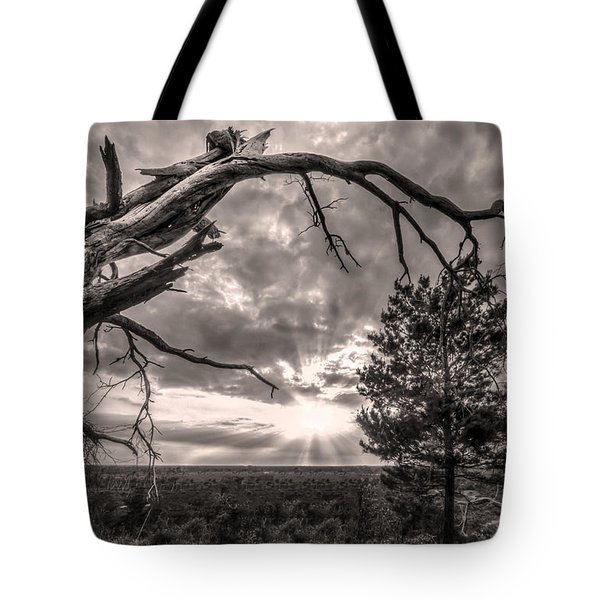 Natures Arch Tote Bag by Debra and Dave Vanderlaan