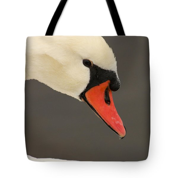 Natures Beauty Tote Bag by Bob and Jan Shriner