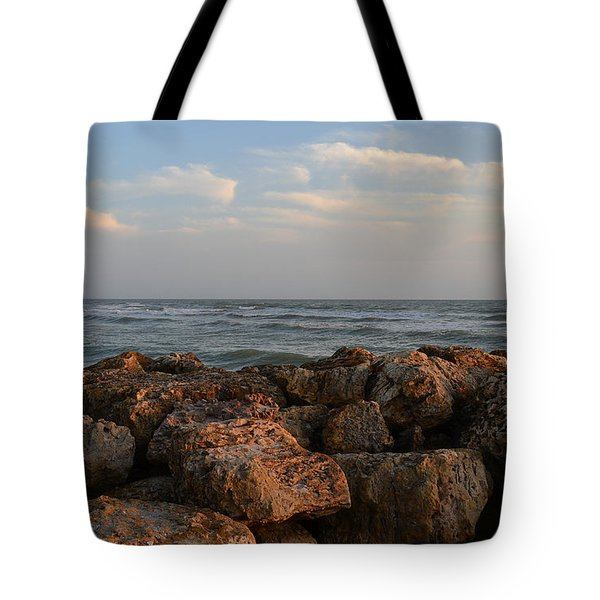 Tote Bag featuring the photograph Nature's Brush by Melanie Moraga