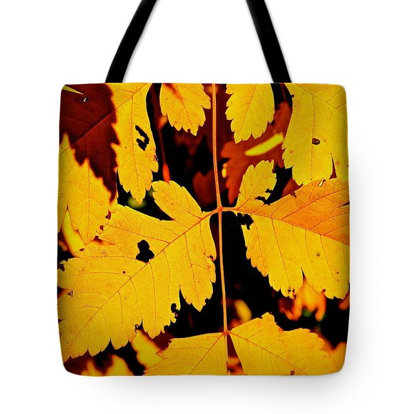 Nature's Designworks Tote Bag by Ira Shander