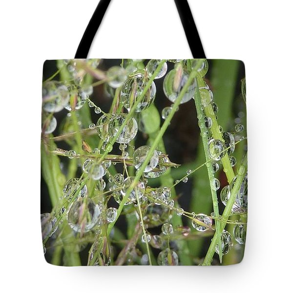 Natures Diamonds Tote Bag by Susan Garren