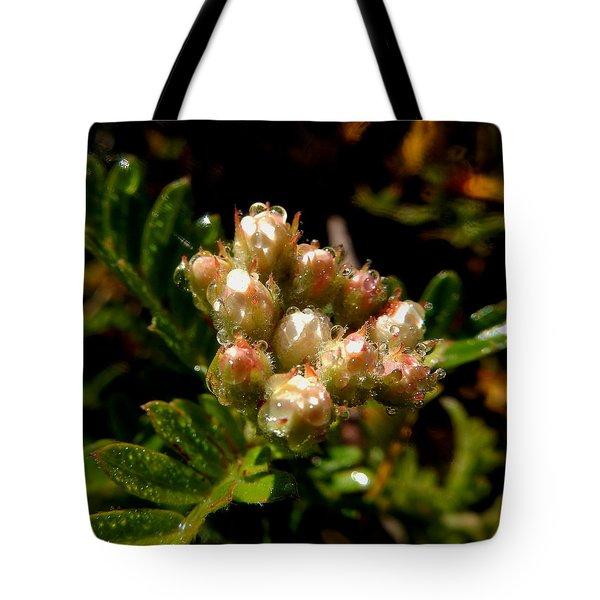 Nature's Drink Tote Bag by Pamela Walton