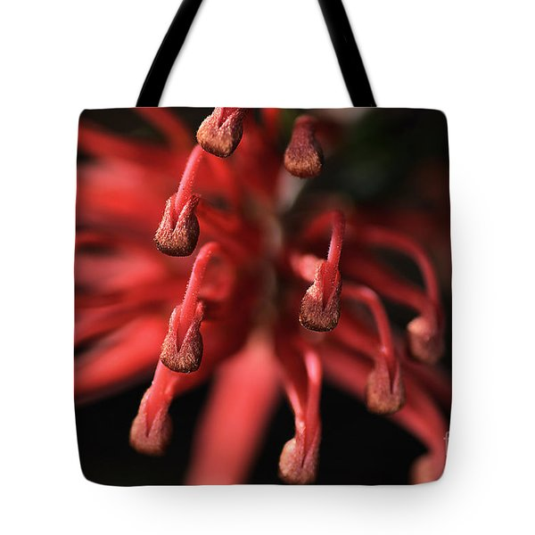 Natures Fireworks Tote Bag by Joy Watson