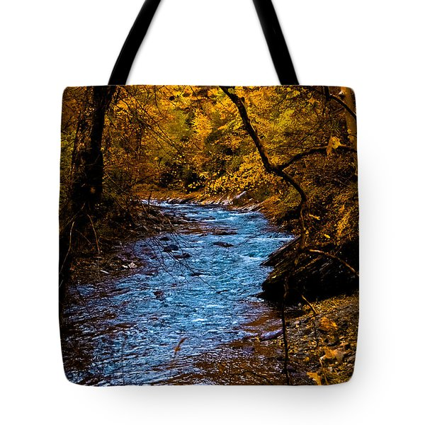 Natures Golden Secret Tote Bag