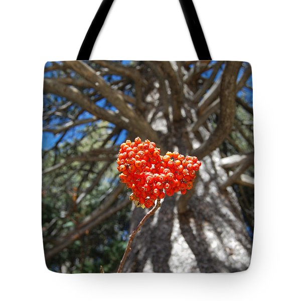 Nature's Heart Tote Bag by Debra Thompson