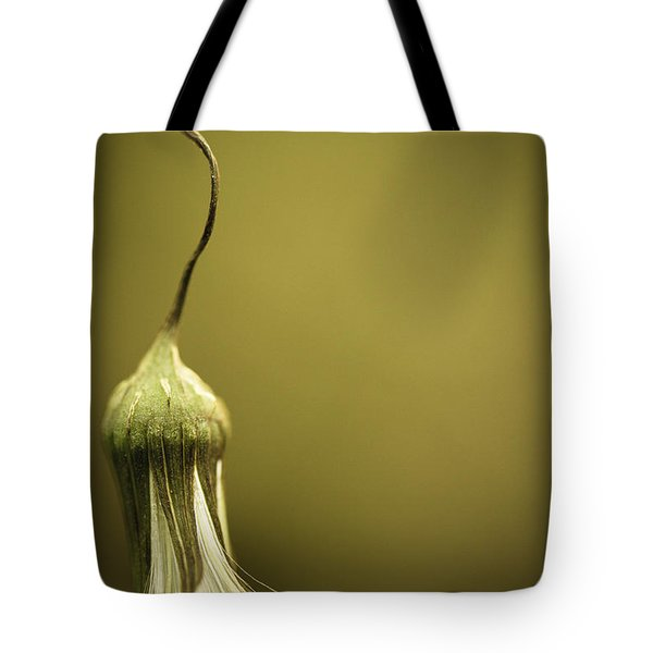 Nature's Little Lamp Tote Bag by Shane Holsclaw