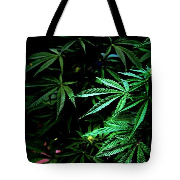 Nature's Medicine Tote Bag by Jeanette C Landstrom
