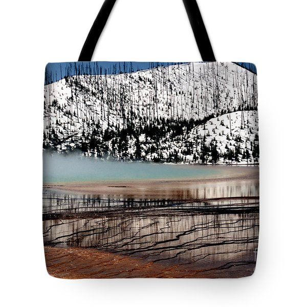 Tote Bag featuring the photograph Nature's Mosaic I by Sharon Elliott