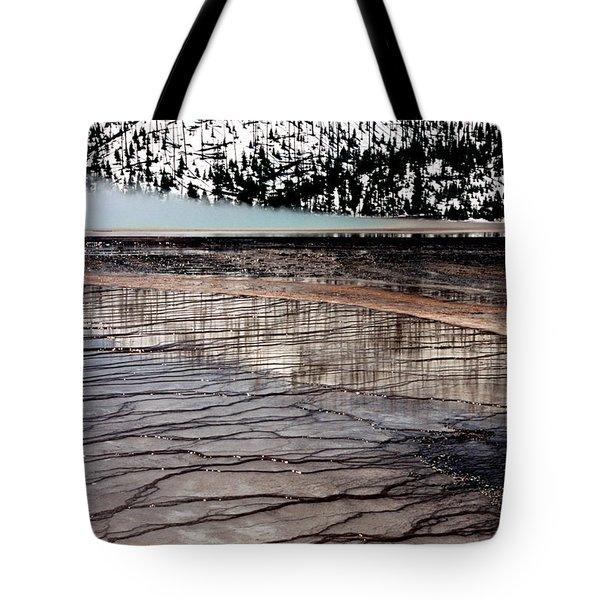 Nature's Mosaic II Tote Bag by Sharon Elliott