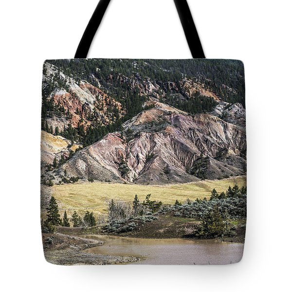 Nature's Palette Tote Bag by Sandi Mikuse