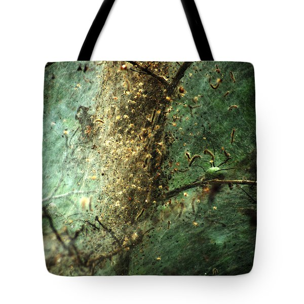 Natures Past Captured In A Web Tote Bag
